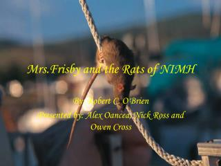 Mrs.Frisby and the Rats of NIMH