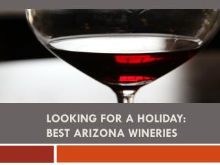 Looking for a Holiday Best Arizona Wineries