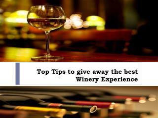 Top Tips to give away the best Winery Experience