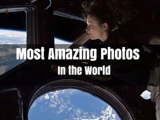 Most Amazing Photos In the World