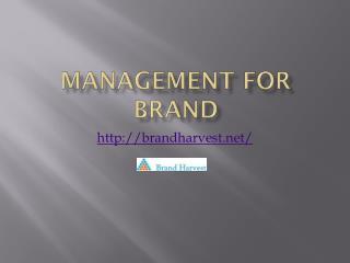 Strategic Brand Management Companies in India