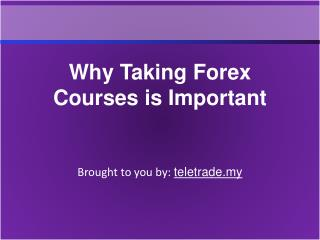 Why Taking Forex Courses is Important