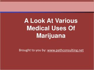 A Look At Various Medical Uses Of Marijuana