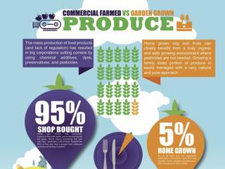 Comparison between Commercially Farmed & Home Grown Produce