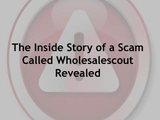 The Inside Story of a Scam Called Wholesalescout Revealed