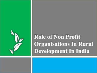 Rural development in India and Non profit organisations