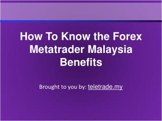 How To Know the Forex Metatrader Malaysia Benefits