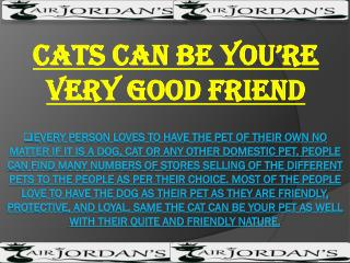 Cats Can Be You're Very Good Friend