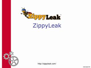 Irrigation Leak Detection