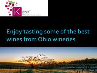 Enjoy tasting some of the best wines from Ohio wineries