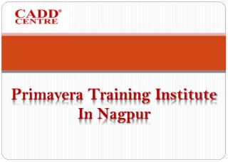 Primavera Training Institute In Nagpur