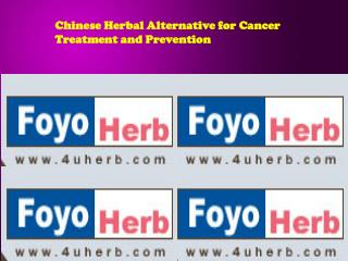 Chinese Herbal Alternative for Cancer Treatment and Preventi