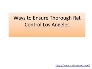 Ways to Ensure Thorough Rat Control Los Angeles