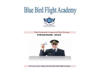 Pilot Training,Commercial Pilot Training - BBFA