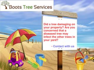 Boots Tree Services