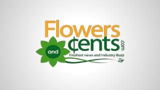 Floral Wholesalers Today