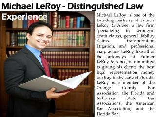 Michael LeRoy - Distinguished Law Experience