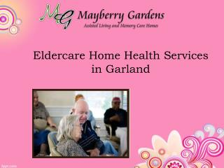 Eldercare Home Health Services in Garland