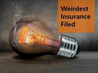 Weirdest Insurance Filed
