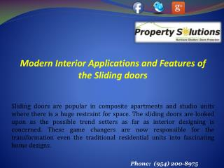 Modern Interior Sliding doors