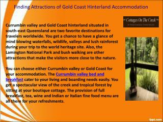 Gold Coast Hinterland Accommodation