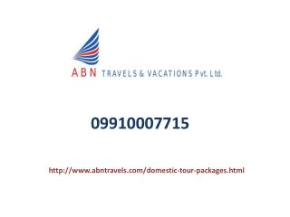 Domestic Tour Operators In Noida