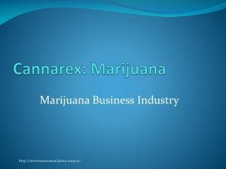 Marijuana Business Industry