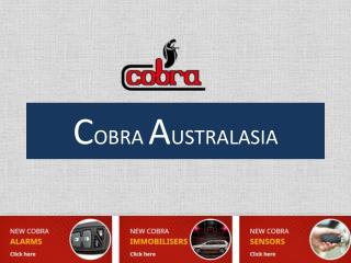 Reliable Car Alarm Security system in Sydney