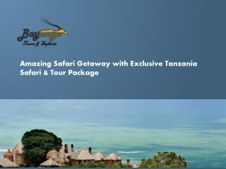 Amazing Safari Getaway with Exclusive Tanzania Safari & Tour
