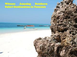 Witness Amazing Southern Safari Destinations in Tanzania