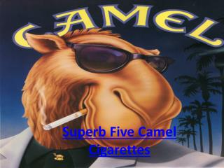 Superb Five Camel Cigarettes