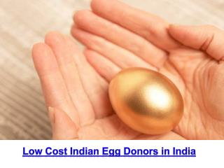 Low cost indian egg donors