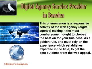 Require Digital Agency for Increasing Online Business