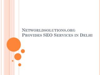 Networldsolutions-org-Provides-SEO-Services-in-Delhi