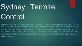 Sydney Termite Control