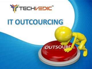 Professional IT Outsourcing Services by Techvedic