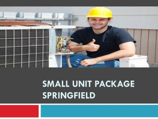 Small unit package Springfield