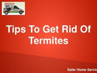 Tips To Get Rid Of Termites