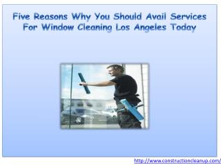 Five Reasons Why You Should Avail Services For Window Cleani