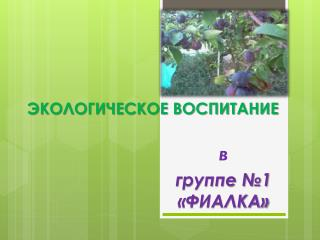 """Экологическое воспитание в группе """"Фиалка"""""""