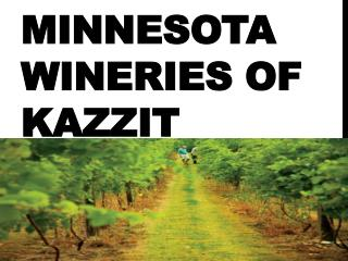 Minnesota Wineries of Kazzit