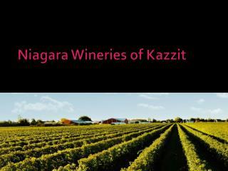 Niagara Wineries of Kazzit