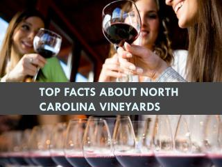 Top Facts about North Carolina Vineyards
