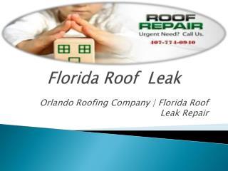 Roof Flashing Leaks