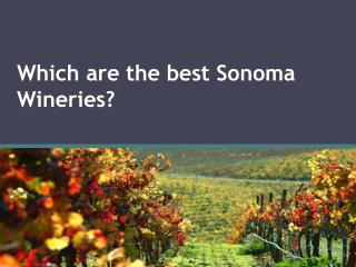 Which are the best Sonoma Wineries