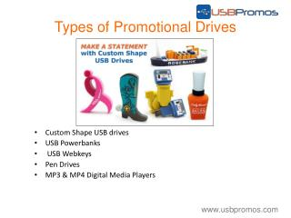 USB Promotional Custom USB Drives
