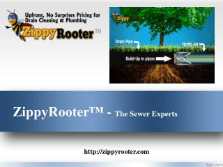 Trenchless Sewer Repair Costs | 800-699-8127 | ZippyRooter