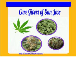 Marijuana Delivery San Jose - Care Givers of San Jose