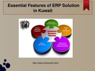 Essential Features of ERP Solution in Kuwait
