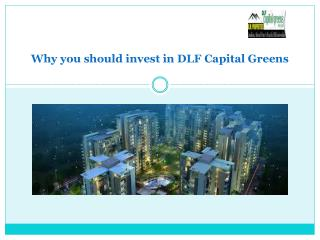 Why you should invest in DLF Capital Greens
